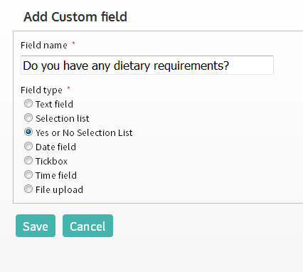 Setting up a Yes/ No custom field
